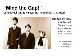 """Mind the Gap!"" Conceptualising  & Measuring Inequalities & Fairness"