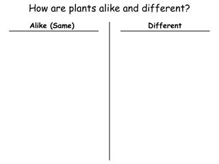 How are plants alike and different?