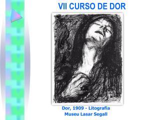 VII CURSO DE DOR