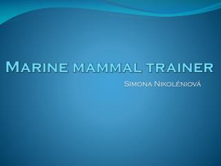 Marine  mammal trainer
