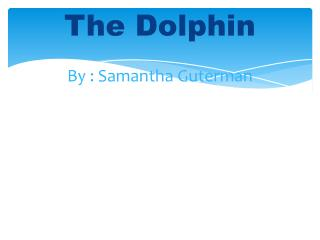 The Dolphin By : Samantha  Guterman