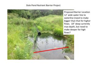 Dole Pond Nutrient Barrier Project