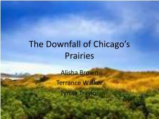 The Downfall of Chicago's Prairies