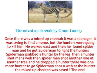 The mixed up cheetah by Grant Landry