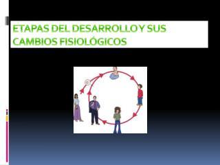 ETAPAS DEL DESARROLLO Y SUS CAMBIOS FISIOLÓGICOS