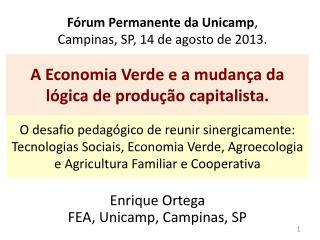 Fórum Permanente da Unicamp ,  Campinas, SP, 14 de agosto de 2013.
