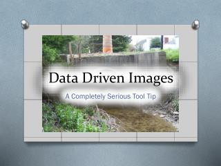 Data Driven Images