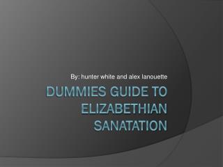 Dummies guide to ELIZABETHIAN SANATATION