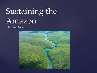 Sustaining the Amazon
