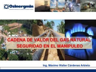 CADENA DE VALOR DEL GAS NATURAL  SEGURIDAD EN EL MANIPULEO