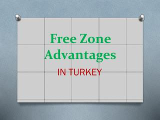 Free Zone Advantages
