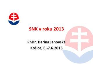 SNK v roku 2013