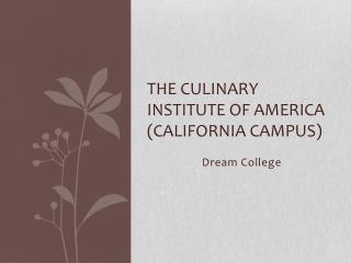 The Culinary institute of America (California campus)