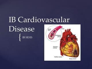 IB Cardiovascular Disease