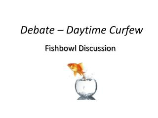 Debate � Daytime Curfew