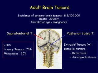 Adult Brain Tumors