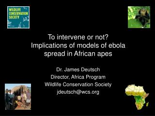 To intervene or not Implications of models of ebola spread in African apes  Dr. James Deutsch Director, Africa Program W