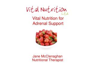 Vital Nutrition for  Adrenal Support