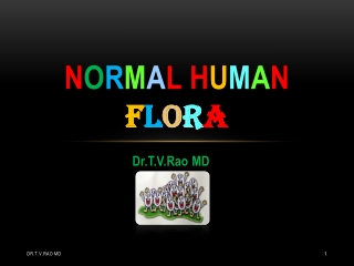 Normal Bacterial Flora in Humans