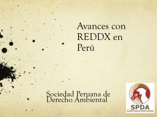 Avances con REDDX en  Perú