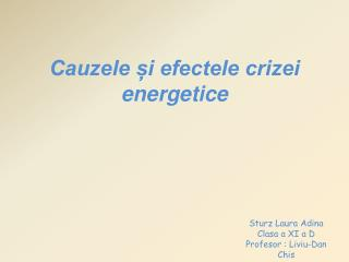 Cauzele ?i efectele crizei energetice