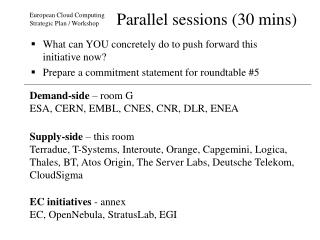 Parallel sessions (30 mins)
