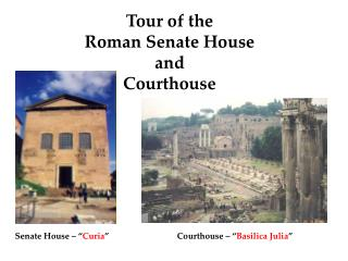 Tour of the  Roman Senate House  and  Courthouse