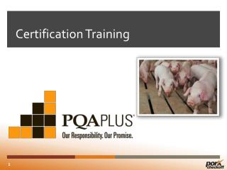 Certification Training