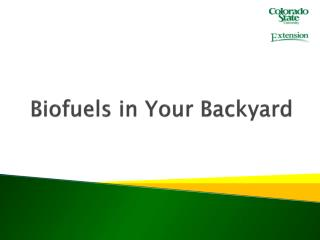 Biofuels  in Your Backyard