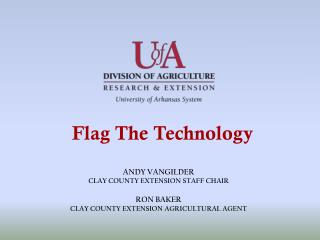Flag The Technology