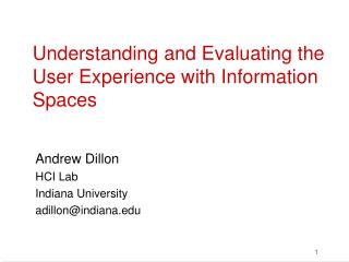 Understanding and Evaluating the User Experience with Information Spaces
