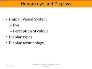 Human Visual System Eye Perception of colour Display types Display terminology