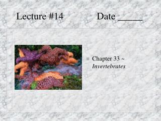 Lecture #14 Date _____