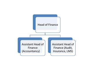 Finance and Procurement Structure