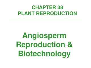 CHAPTER 38  PLANT REPRODUCTION