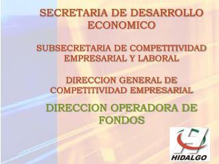 SECRETARIA DE DESARROLLO ECONOMICO SUBSECRETARIA DE COMPETITIVIDAD EMPRESARIAL Y LABORAL