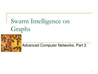 Swarm Intelligence on Graphs