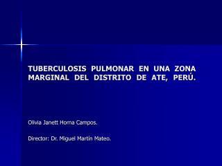TUBERCULOSIS PULMONAR EN UNA ZONA MARGINAL DEL DISTRITO DE ATE, PER .