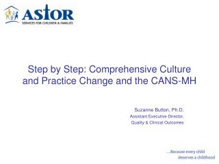 Step by Step: Comprehensive Culture and Practice Change and the CANS-MH