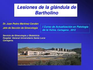 Lesiones de la gl�ndula de Bartholino