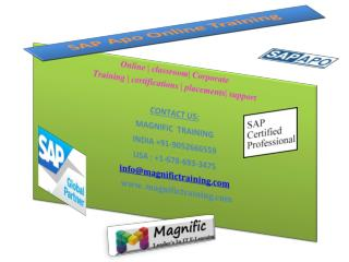 sap apo online training in usa