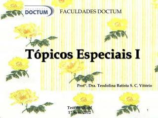 Profª. Dra. Teodolina Batista S. C. Vitório