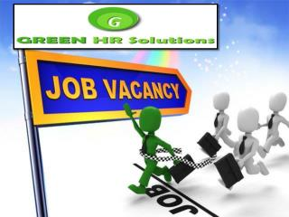IT Recruitment Services Provided By Green HR Solution