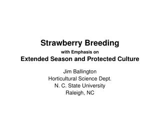 Strawberry Breeding with Emphasis on  Extended Season and Protected Culture