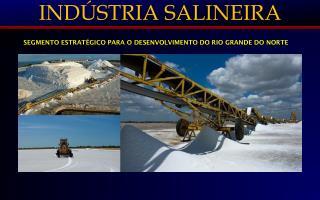INDÚSTRIA SALINEIRA