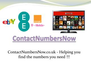 Contact Numbers Now