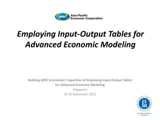 Employing Input-Output Tables for Advanced Economic Modeling