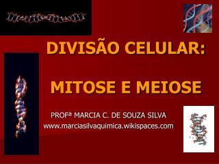 DIVIS O CELULAR:  MITOSE E MEIOSE