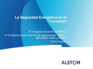 La Seguridad Energética en la Transición