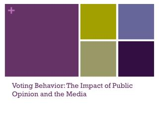 Voting Behavior: The Impact of Public Opinion and the Media